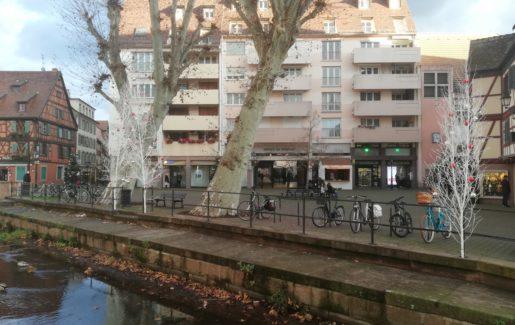 """Réhabilitation de 10 appartements """"Label Génération"""" à Colmar"""