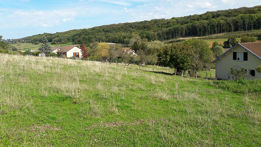 terrains a vendre miserey salines