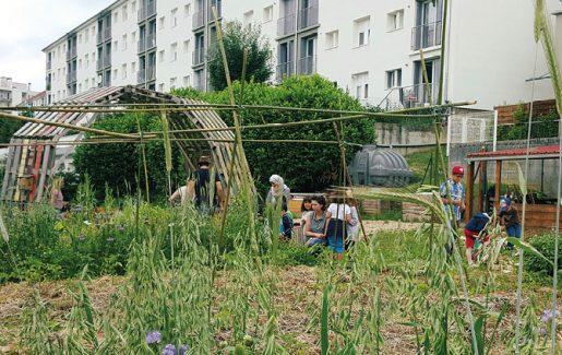 jardin partagé à Besançon